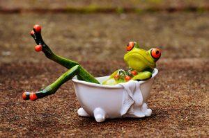 Ein Frosch in einer Badewanne