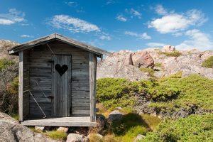 Ein Bild einer Toilette in der Natur