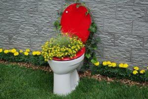 Ein Bild einer schönen Toilette